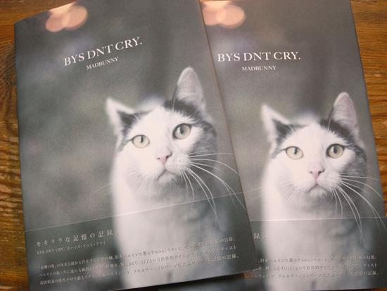 「BOYS DNT CRY. / she walks on me…」 MADBUNNY写真集入荷!!